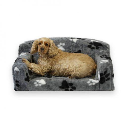 dog Sofa fur paws